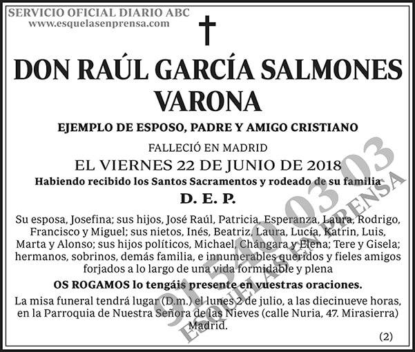 Raúl García Salmones Varona